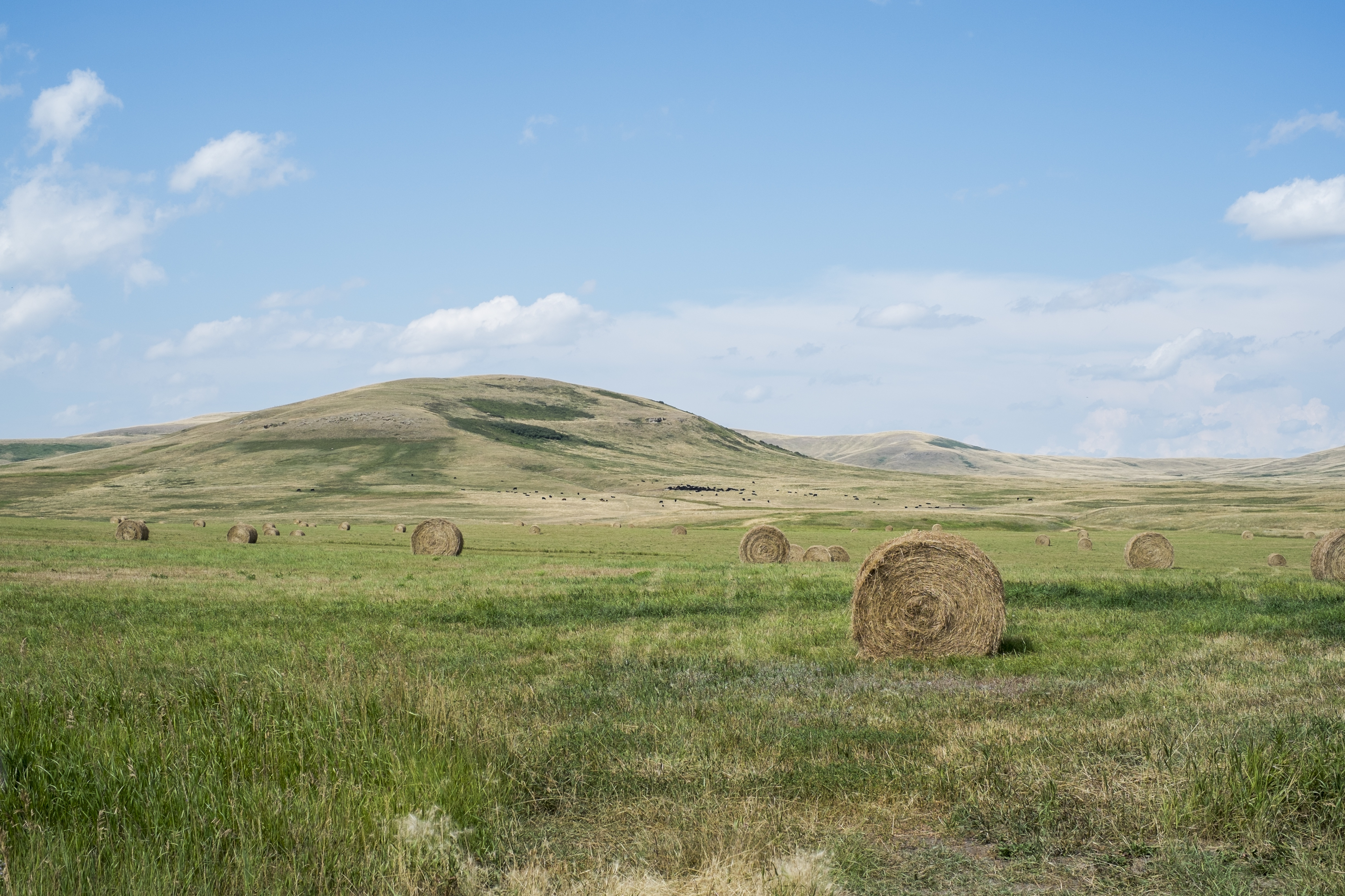 Four Pressing Needs in Rural Communities, and How the Church Should Respond
