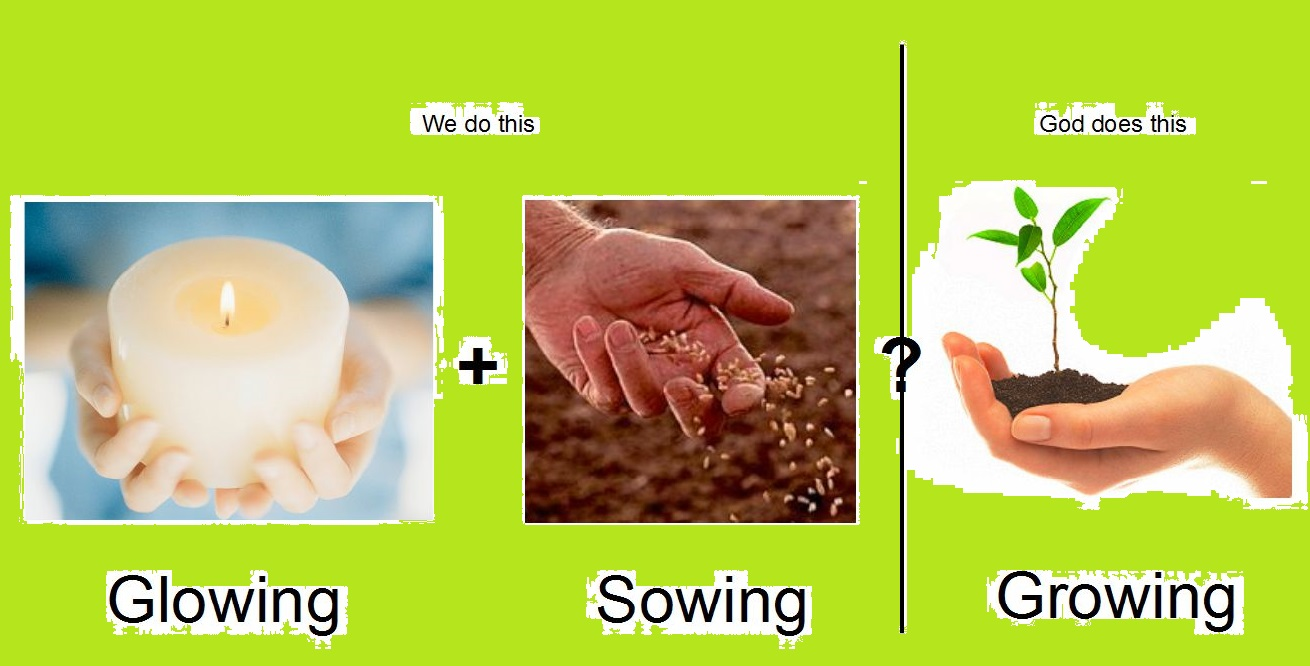 Glowing+sowing=Growing featured image